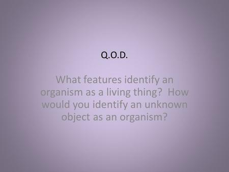 Q.O.D. What features identify an organism as a living thing? How would you identify an unknown object as an organism?