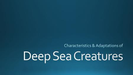 All of these factors have led to adaptions of deep sea life.