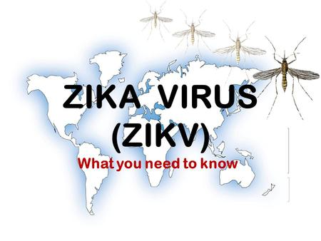 ZIKA VIRUS (ZIKV) What you need to know. www.owwa.gov.ph What is Zika Virus Infection?  Virus belonging to the same family of viruses with Dengue and.