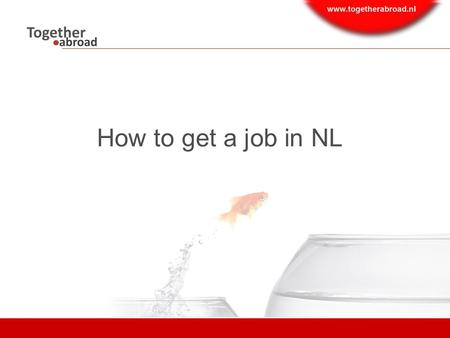 How to get a job in NL. Content  Employment market  Where to search for jobs  Questions  How to search/ Social media recruitment trends.