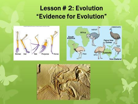 "Lesson # 2: Evolution ""Evidence for Evolution"". We will look at major evidence supporting theories of evolution: 1.Fossil Record 2.Comparative Anatomy."