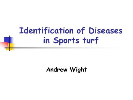 Identification of Diseases in Sports turf Andrew Wight.