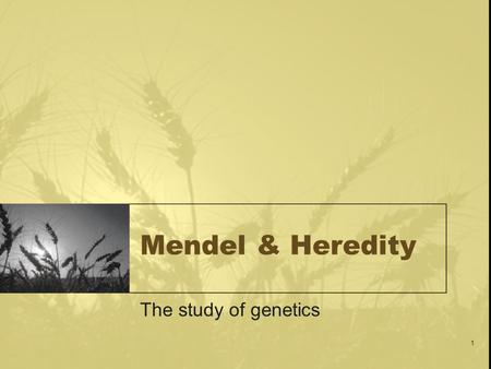 1 Mendel & Heredity The study of genetics. 2 A Quick Review Define the term gamete. Summarize the relationship between chromosomes & genes. Differentiate.