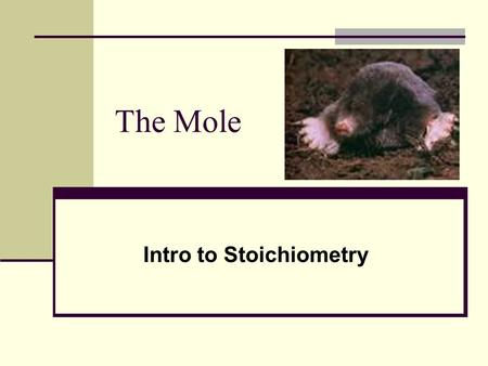 The Mole Intro to Stoichiometry. Measurements in Chemistry Atomic Mass: the mass of an atom of a certain element in atomic mass units (amu). 1 amu = 1.66.