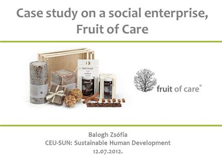 Case study on a social enterprise, Fruit of Care Balogh Zsófia CEU-SUN: Sustainable Human Development 12.07.2012.
