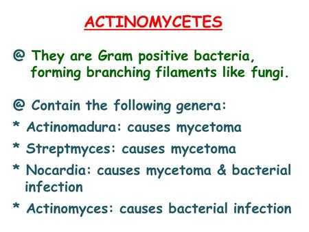 They are Gram positive bacteria, forming branching filaments like Contain the following genera: * Actinomadura: causes mycetoma.