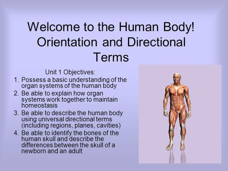 Welcome to the Human Body! Orientation and Directional Terms Unit 1 Objectives: 1.Possess a basic understanding of the organ systems of the human body.