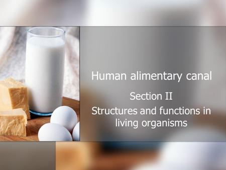 Human alimentary canal Section II Structures and functions in living organisms.