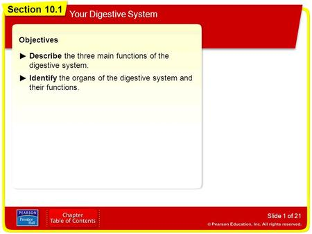 Section 10.1 Your Digestive System Slide 1 of 21 Objectives Describe the three main functions of the digestive system. Identify the organs of the digestive.