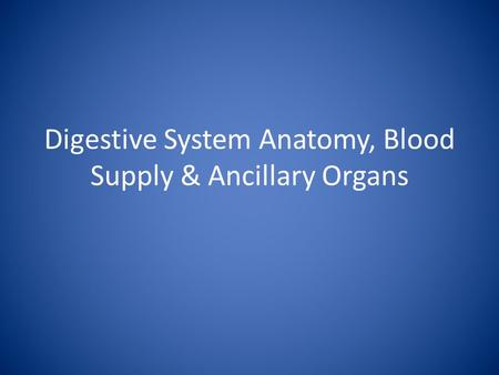 Digestive System Anatomy, Blood Supply & Ancillary Organs.