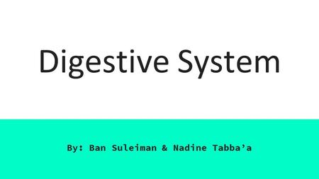 an analysis of the digestive system a system of organs for changing food chemically for absorption The digestive system mechanically breaks up food chemically digests carbohydrates basic ph enzyme amylase absorption of food digestion of.