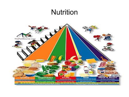 "Nutrition. Quote from the First Lady ""The plate also shows how to balance your food groups. There's a reason the protein section is smaller: You don't."