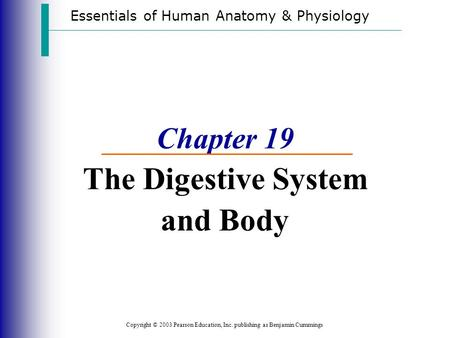 Essentials of Human Anatomy & Physiology Copyright © 2003 Pearson Education, Inc. publishing as Benjamin Cummings Chapter 19 The Digestive System and Body.