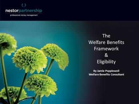 The Welfare Benefits Framework & Eligibility By Jamie Popplewell Welfare Benefits Consultant.