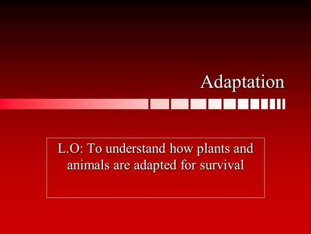 Adaptation L.O: To understand how plants and animals are adapted for survival.