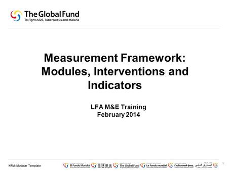 NFM: Modular Template Measurement Framework: Modules, Interventions and Indicators LFA M&E Training February 2014 1.