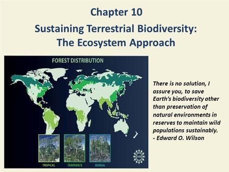 Chapter 10 Sustaining Terrestrial Biodiversity: The Ecosystem Approach There is no solution, I assure you, to save Earth's biodiversity other than preservation.