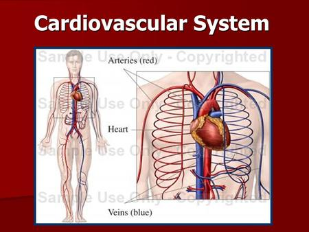 Cardiovascular System. System consists of three main parts: System consists of three main parts: –Heart –Blood vessels  Arteries  Veins  capillaries.