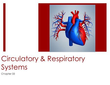 Circulatory & Respiratory Systems Chapter 33. Materials Are Transported and Heat is Distributed in the Body  Your body must  transport nutrients  transport.