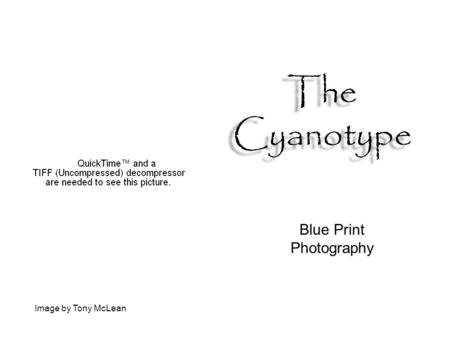 Blue Print Photography