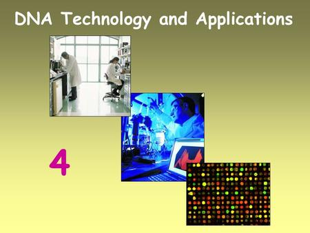The history function and advancement in dna technologies