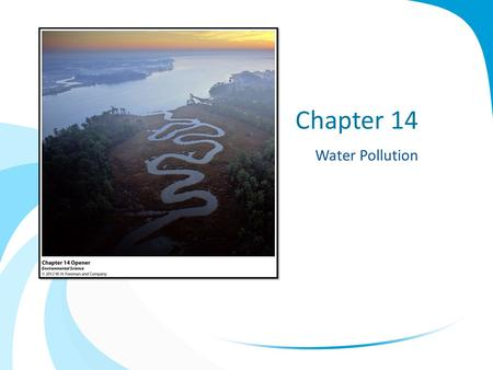 Chapter 14 Water Pollution. The Chesapeake Bay Chesapeake Bay – largest estuary in the US Pollutants: – Excess nitrogen and phosphorus From 3 major sources: