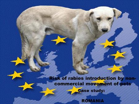 Risk of rabies introduction by non- commercial movement of pets Case study: ROMANIA.