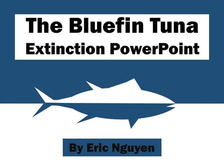 The Bluefin Tuna Extinction PowerPoint By Eric Nguyen.
