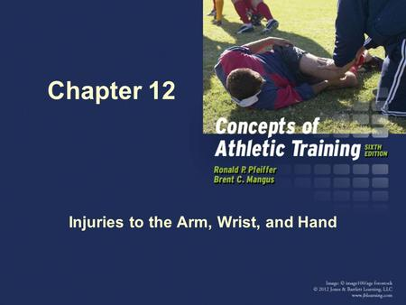 Chapter 12 Injuries to the Arm, Wrist, and Hand. Anatomy of Elbow/Forearm The bones of the arm are the humerus, radius, and ulna. The elbow is composed.