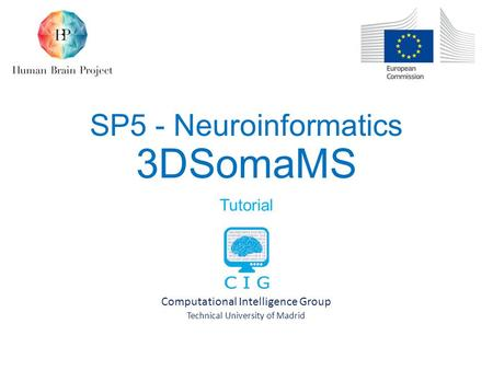 SP5 - Neuroinformatics 3DSomaMS Tutorial Computational Intelligence Group Technical University of Madrid.