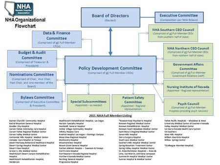 Board of Directors (Elected) Policy Development Committee (Comprised of all Full-Member CEOs) Data & Finance Committee (Comprised of all Full-Member CFOs)