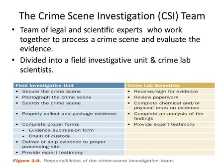 The Crime Scene Investigation (CSI) Team Team of legal and scientific experts who work together to process a crime scene and evaluate the evidence. Divided.