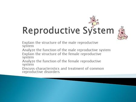 Explain the structure of the male reproductive system Analyze the function of the male reproductive system Explain the structure of the female reproductive.