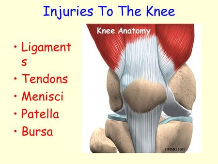 Injuries To The Knee Ligaments Tendons Menisci Patella Bursa.