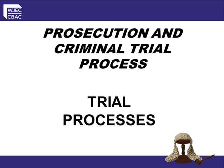 PROSECUTION AND CRIMINAL TRIAL PROCESS TRIAL PROCESSES.