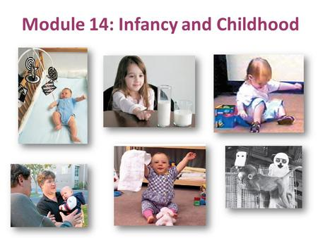 Module 14: Infancy and Childhood. Infancy: newborns growing almost into toddlers Infancy and Childhood For each of these stages, we will study:  brain.