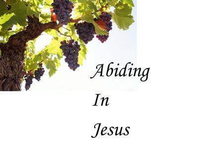 Abiding In Jesus. What is being a christian really about? Trusting Jesus Obeying Jesus Following Jesus Abiding in Jesus Loving God Worshipping God Serving.
