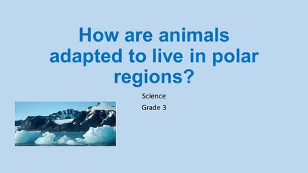How are animals adapted to live in polar regions? Science Grade 3.