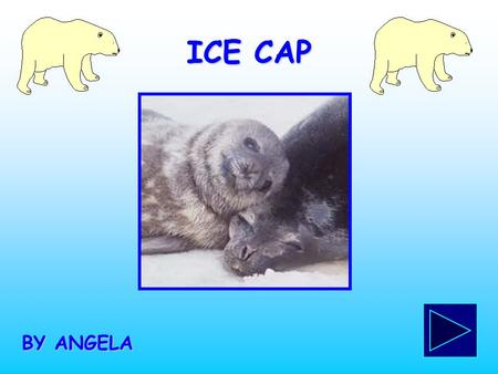 ICE CAP BY ANGELA. LOCATION Ice Caps are located in Greenland and Antartica.
