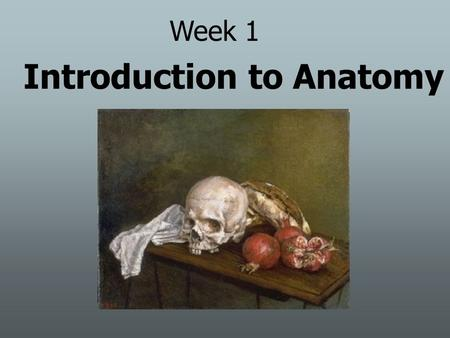 Introduction to Anatomy Week 1. OBJECTIVES Anatomical Terminology Planes of section Body cavities Abdominopelvic cavities Organ & organ systems Rat dissection.