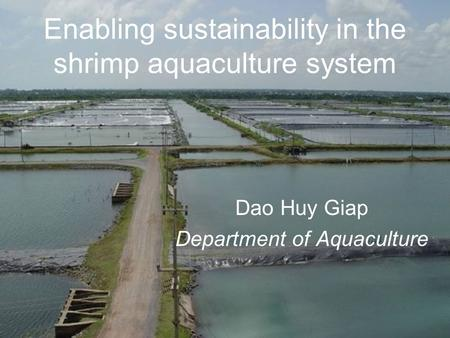 Enabling sustainability in the shrimp aquaculture system Dao Huy Giap Department of Aquaculture.