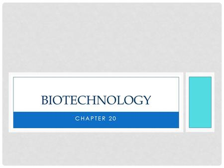 CHAPTER 20 BIOTECHNOLOGY. Biotechnology – the manipulation of organisms or their components to make useful products Biotechnology is used in all facets.