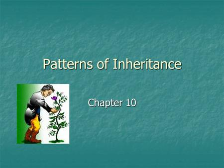 Patterns of Inheritance Chapter 10. Blending Hypothesis of Inheritance Blending hypothesis (1800s) Blending hypothesis (1800s) Early explanation of how.