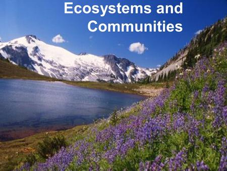 Ecosystems and Communities Cycles of matter Unlike energy, matter is constantly being recycled in an ecosystem. Known as biogeochemical cycles.