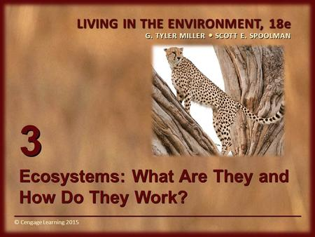 © Cengage Learning 2015 LIVING IN THE ENVIRONMENT, 18e G. TYLER MILLER SCOTT E. SPOOLMAN © Cengage Learning 2015 3 <strong>Ecosystems</strong>: What Are They <strong>and</strong> How Do.