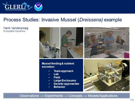 1/13 Process Studies: Invasive Mussel (Dreissena) example Hank Vanderploeg Ecosystem Dynamics Mussel feeding & nutrient excretion: Team approach Lab Field.