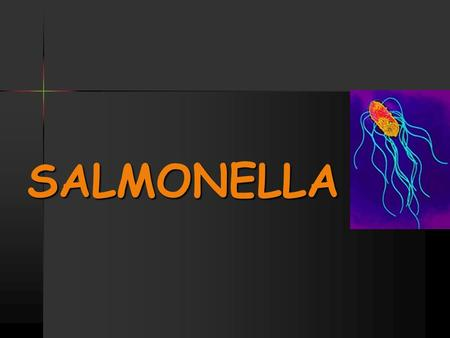 SALMONELLA. Salmonella is a Gram-negative facultative rod- shaped bacterium belonging to family Enterobacteriaceae, Salmonella is a Gram-negative facultative.