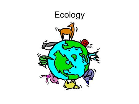 Ecology. Study of organisms interactions with the environment (abiotic factors) and each other (biotic factor)