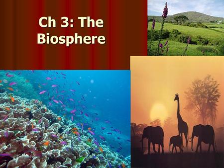 Ch 3: The Biosphere. Studying Our Living Planet Biosphere: all life on Earth and all parts of the Earth in which life exists Biosphere: all life on Earth.