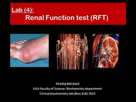 Lab (4): Renal Function test (RFT)